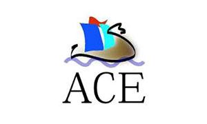 ACE ENDEL : Séminaire GPSI et soirée privative